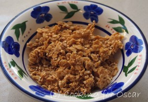 FAILSAFE Granola