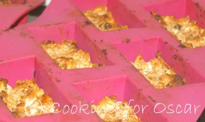 Silicon Trays for Muesli Bars